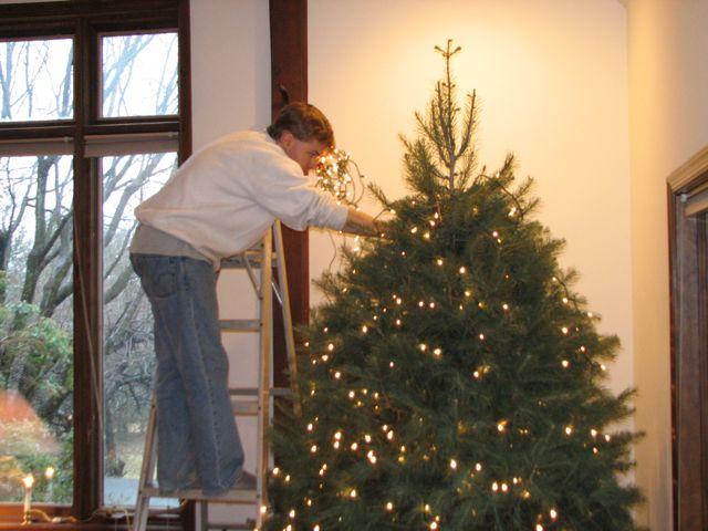 tree fits within twelve foot ceilings