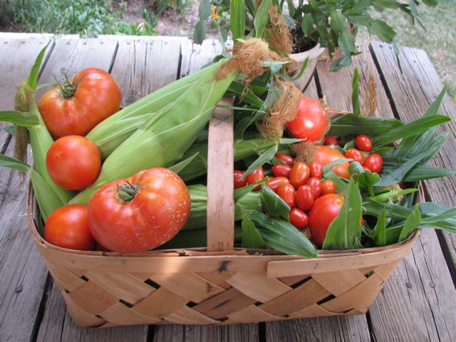 The Garden Picking Basket