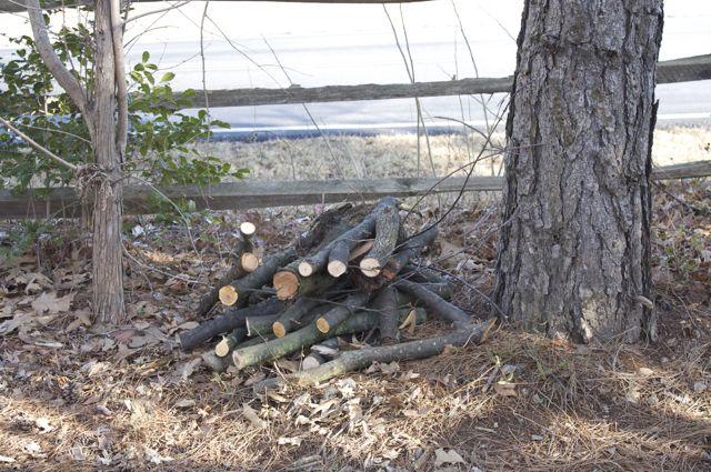 Hardwood Trimmings