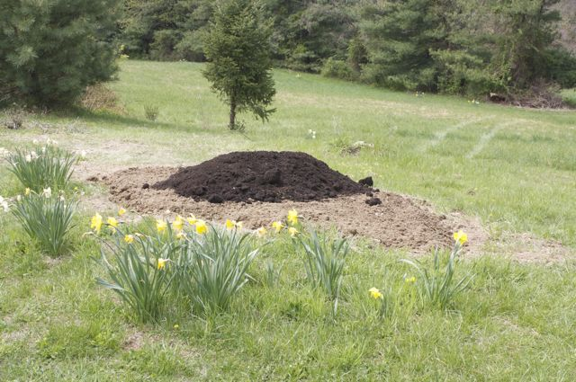 Add a layer of topsoil and then compost