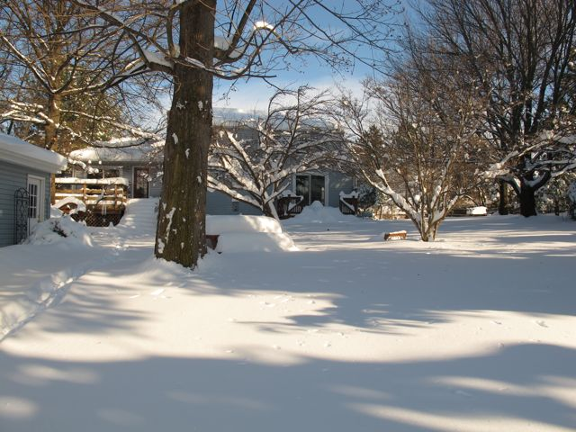 The big snow of December 20th