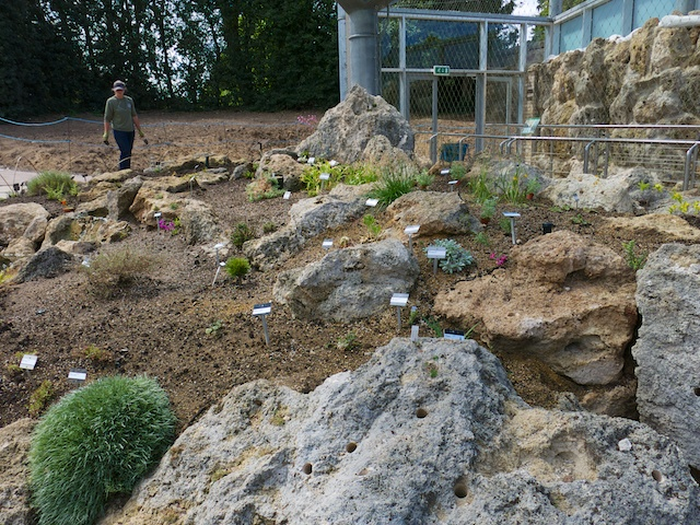 We saw the construction of a new state-of-the-art Alpine Garden House with a vertical Tufa Wall